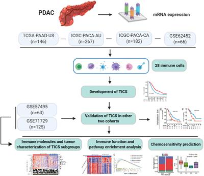 Tumor-Infiltrating Immune Cell Signature Predicts the Prognosis and Chemosensitivity of Patients With Pancreatic Ductal Adenocarcinoma