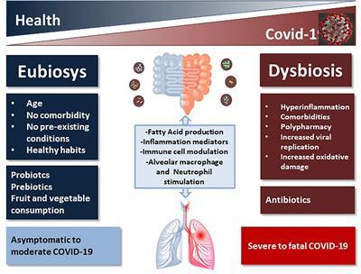 dysbiosis o que e papilloma on the face