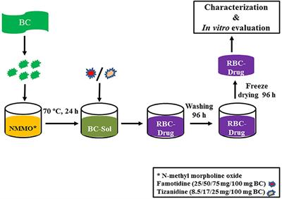 Frontiers Development And Evaluation Of Drug Loaded Regenerated Bacterial Cellulose Based Matrices As A Potential Dosage Form Bioengineering And Biotechnology