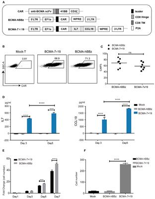 The BCMA-Targeted Fourth-Generation CAR-T Cells Secreting IL-7 and CCL19 for Therapy of Refractory/Recurrent Multiple Myeloma