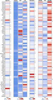 The Identification and Validation of Two Heterogenous Subtypes and a Risk Signature Based on Ferroptosis in Hepatocellular Carcinoma