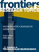 New Frontiers Ebook: Neuroplastic changes in addiction