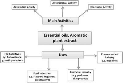 Frontiers | Essential Oils: Sources of Antimicrobials and Food