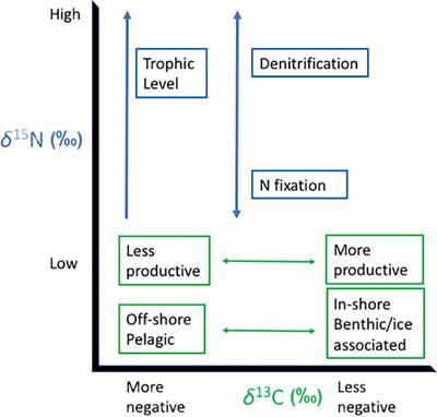 Frontiers | The Utility of Combining Stable Isotope and