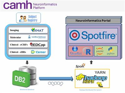 Frontiers | The CAMH Neuroinformatics Platform: A Hospital-Focused