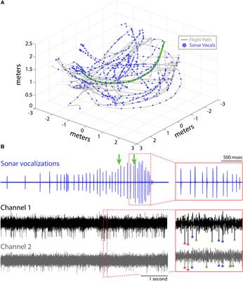 Frontiers | 3D Hippocampal Place Field Dynamics in Free