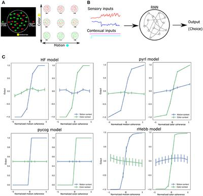Frontiers | Task-Related Synaptic Changes Localized to Small