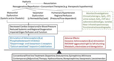 Frontiers | Cardiovascular Supportive Therapies for Neonates