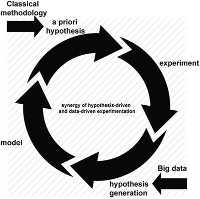 Frontiers | From Big Data to Precision Medicine | Medicine