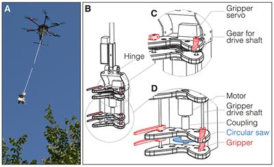Frontiers | Novel Twig Sampling Method by Unmanned Aerial
