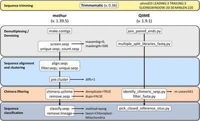 Frontiers | Comparison of Mothur and QIIME for the Analysis of Rumen