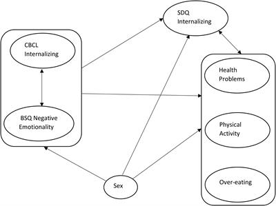 Frontiers   Health Outcomes Associated With Internalizing