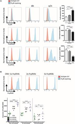 Frontiers | FcγRIIIb Restricts Antibody-Dependent