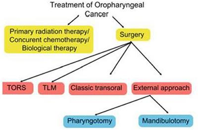 Frontiers | Current Role of Surgery in the Management of