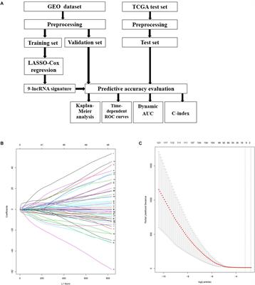 Frontiers   Prediction of Recurrence in Cervical Cancer
