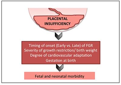 Frontiers | Neonatal Morbidities of Fetal Growth Restriction