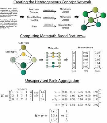 modern biology study guide 15 1