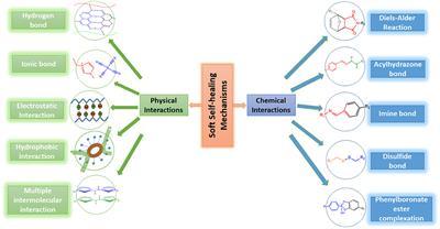 Frontiers   Soft Self-Healing Nanocomposites   Materials
