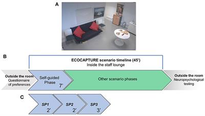 Frontiers | Exploration Deficits Under Ecological Conditions