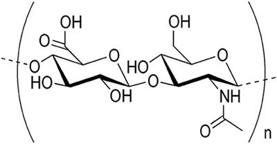 Frontiers | Hyaluronic Acid: Molecular Mechanisms and
