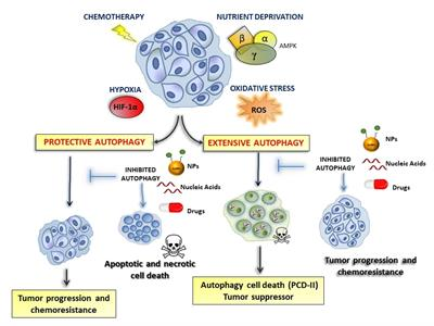 Frontiers in Oncology