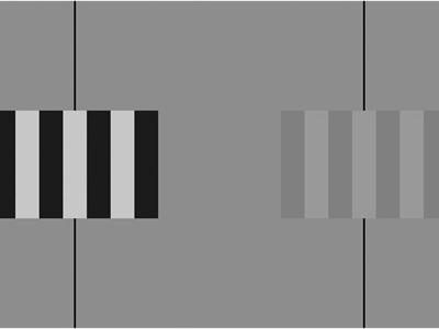 The Venetian blind effect and the mechanisms of early