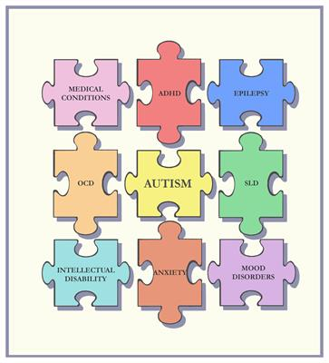 Researchers Question Autism Prevalence >> Comorbidity And Autism Spectrum Disorder Frontiers Research Topic